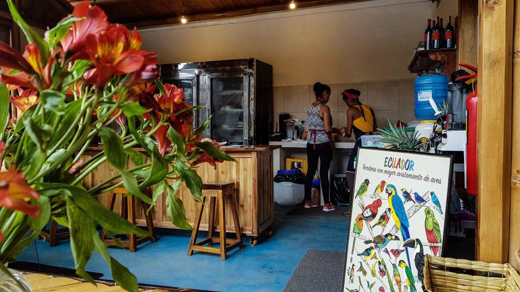 Urlaub in Südamerika Reise nach Ecuador Mindo und Schmetterlingspark | kuchengeschichten