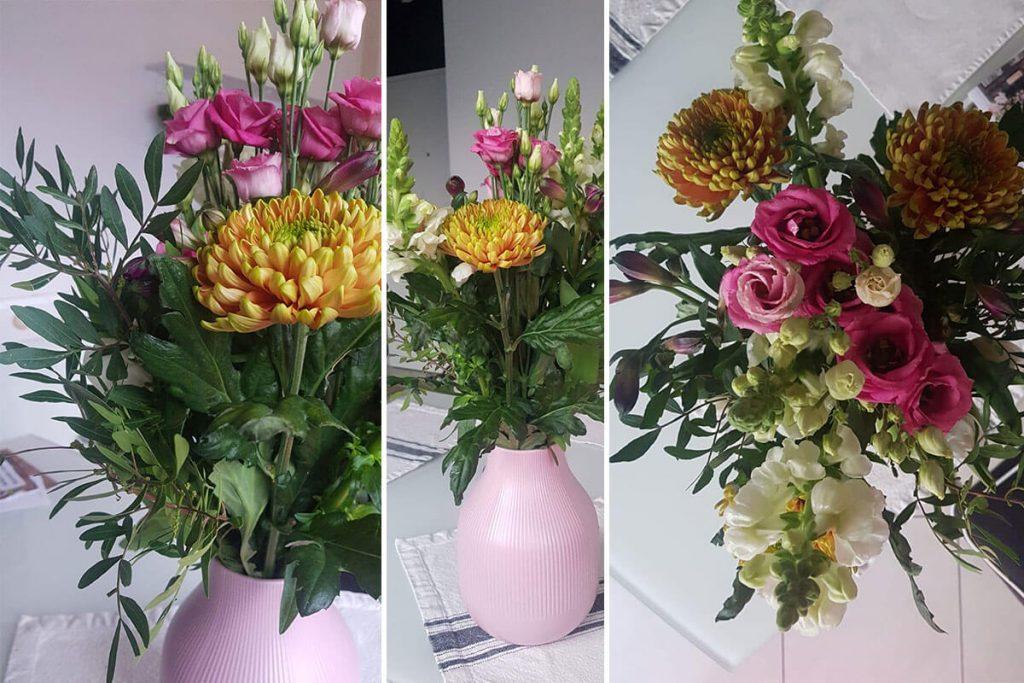 Freddies Flowers | kuchengeschichten